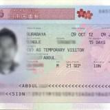 Visa Jepang Alid