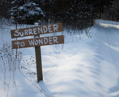 Surrender to Wonder 2