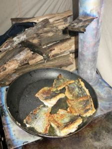 frying trout