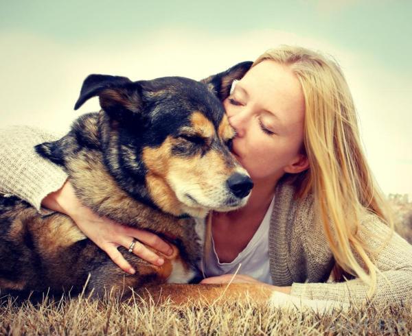 Should I Kiss My Dog ?