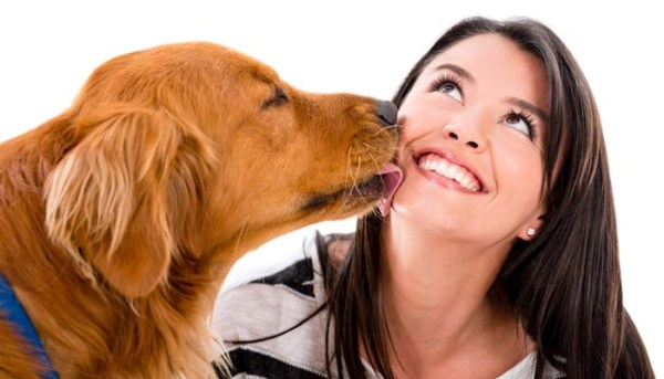 Why-Do-Dogs-Lick-You-and-Why-You-Should-Stop-Them-From-Licking