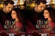 Bin Roye to release in approx. 75 – 100 screens in India