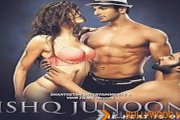 Ishq Junoon: The Heat is On Movie Review