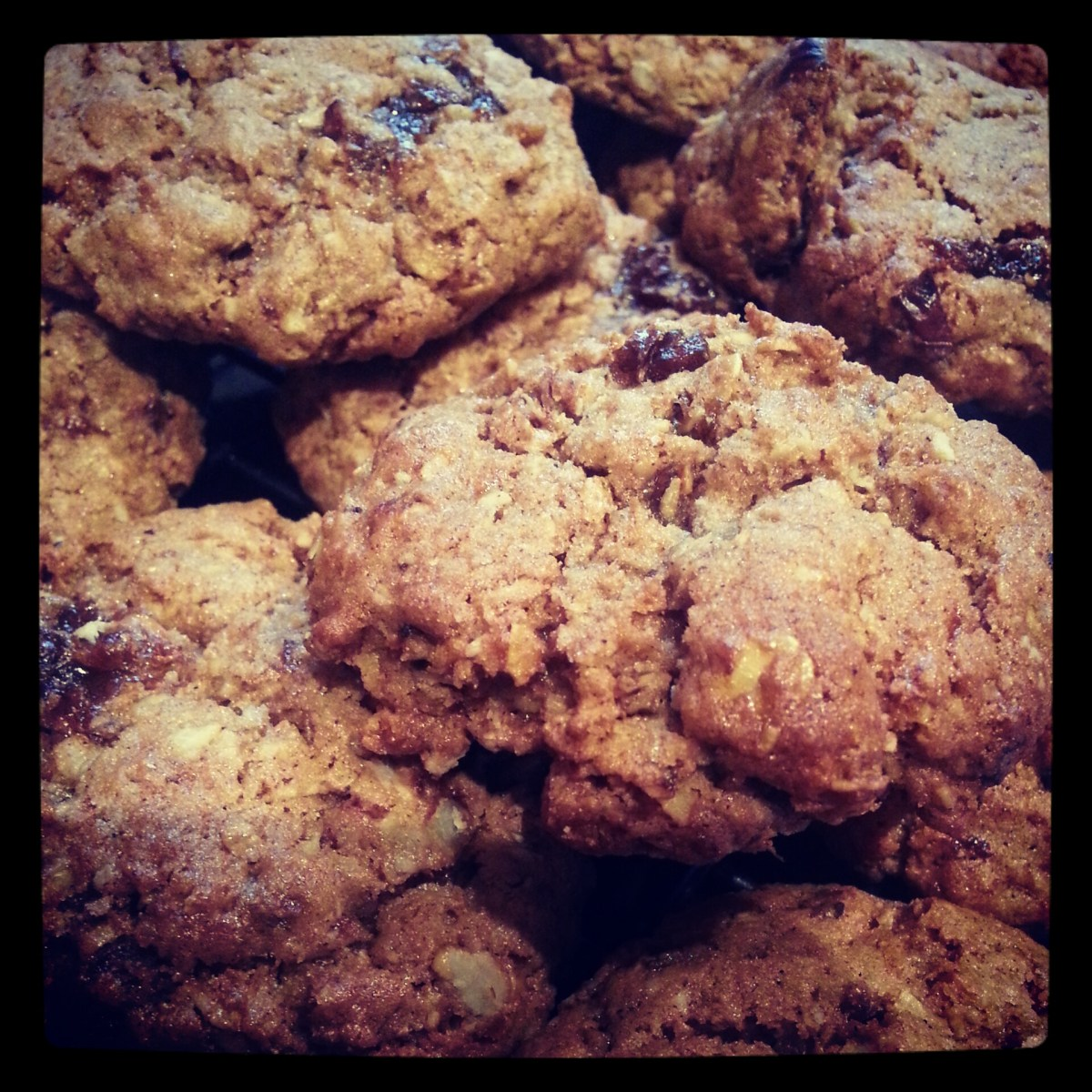 Oat and raisin biscuits