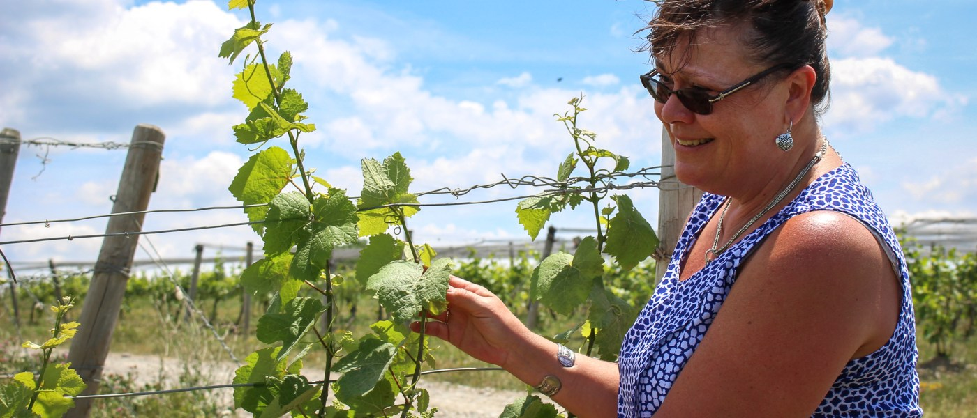 Tina Hazlett manages a vineyard in New York's Finger Lakes region that's been in her husband's family since 1852. But she worries a plan to store natural gas in nearby underground caverns could pollute Seneca Lake, which is the water supply for several communities. Photo: Julie Grant