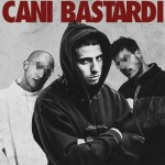 cani-bastardi-1440-600x600