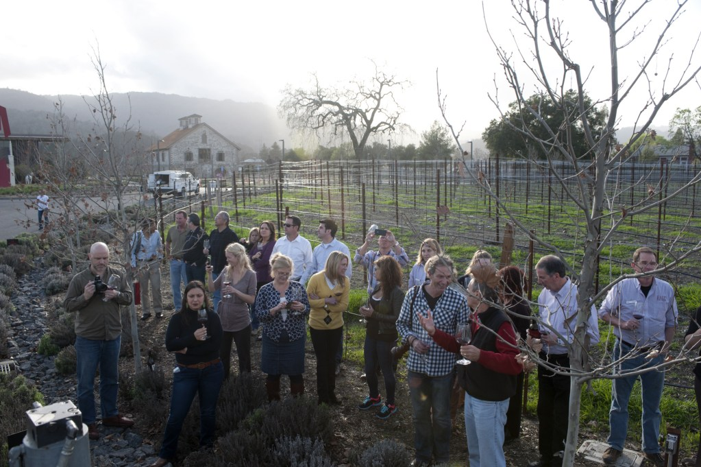 Guests at Wine and Art Exploration Tour at HALL Wines (Photo Courtesy of HALL Wines)