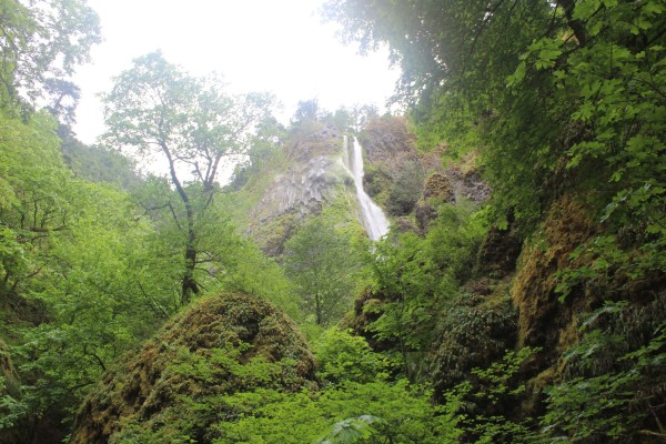 Waterfall in the Columbia Gorge (Image by LoudPen)