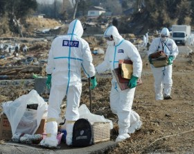 Police officers wearing radiation protection suits collect photo albums as they search for victims in Minamisoma, inside the deserted evacuation zone established for the 20 km radius near Fukushima Daiichi Nuclear Power Plant