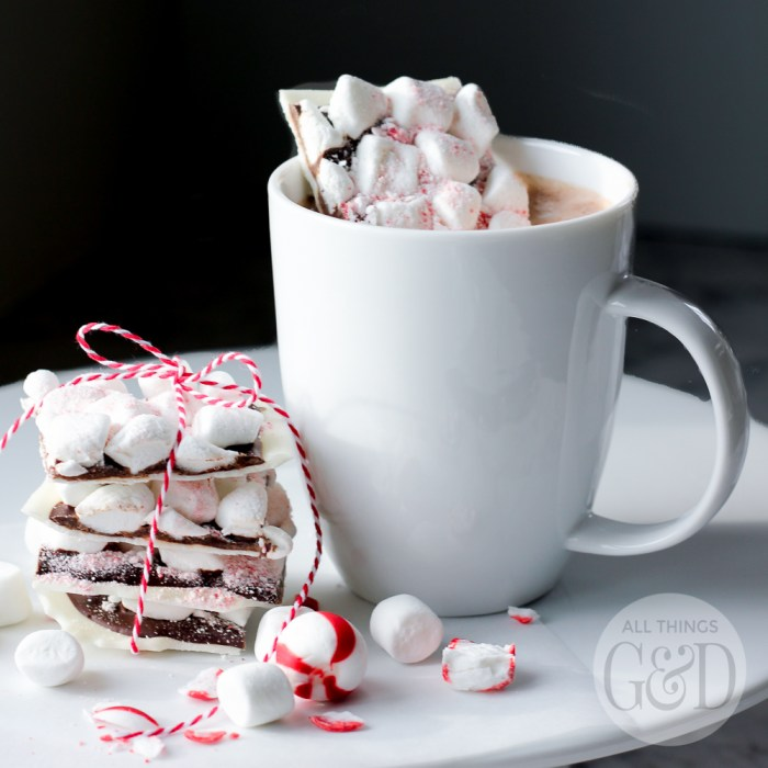 Peppermint Chocolate Hot Cocoa Mix-In
