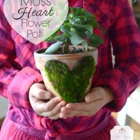 Moss Heart Flower Pot