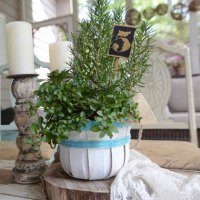 Rustic Wedding Table Markers