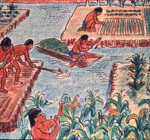 agricultura-prehispanica-02