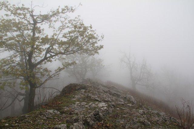 Small Carpathians, Slovakia