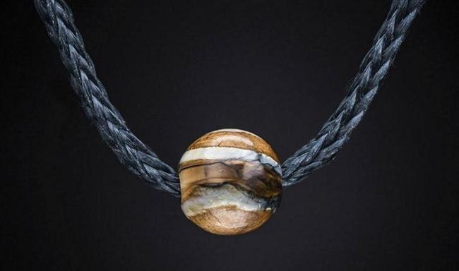 عظام الديناصورات والمذنبات (6)