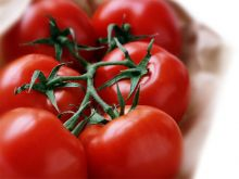 ولاية الخرطوم : الفحص المعملي أثبت خلو الطماطم والخضروات من أية أثار ضارة بصحة الانسان