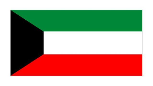 الهلال الأحمر الكويتي يوزع 77 طناً مساعدات إنسانية لمواطني صالحة