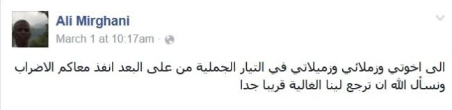علي ميرغني1