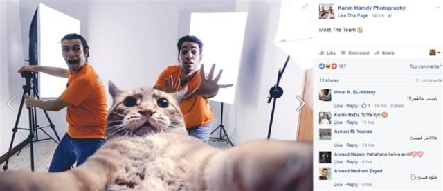سيلفي «القطة» يشعل «فيس بوك»