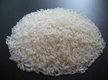 مشروع التعاون السوداني الياباني الزراعي مستقبل مشرق لزراعة الأرز الهوائي بولاية الجزيرة