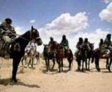 المسيرية: مباركة برلمان الجنوب للاستفتاء الآحادي مؤشر خطير