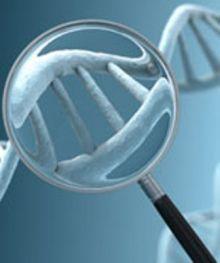 البصمة الوراثية.. شفرة فك الطلاسم الجنائية