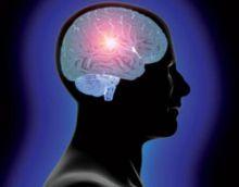 الحاسوب يحتاج (40 ) دقيقة لتحليل ثانية من مخ الإنسان