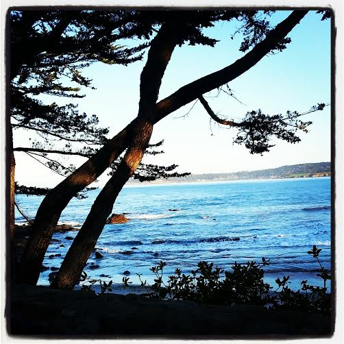 Mornings in Carmel by the Sea