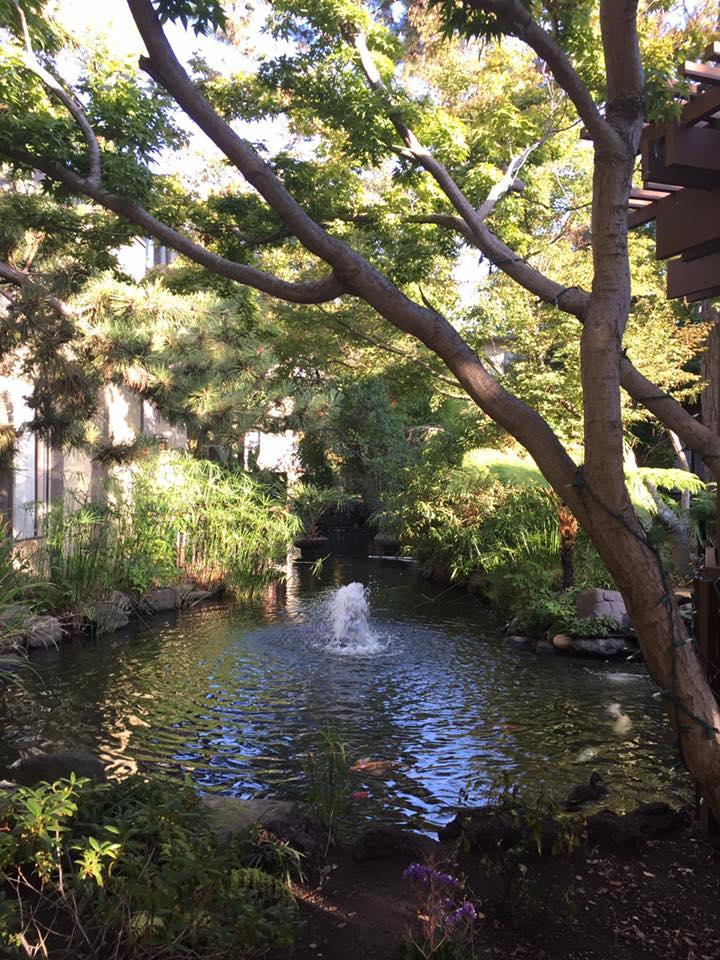 dinah garden hotel. A Koi Fish Pond Awaits You At Dinah\u0027s, Too. Dinah Garden Hotel