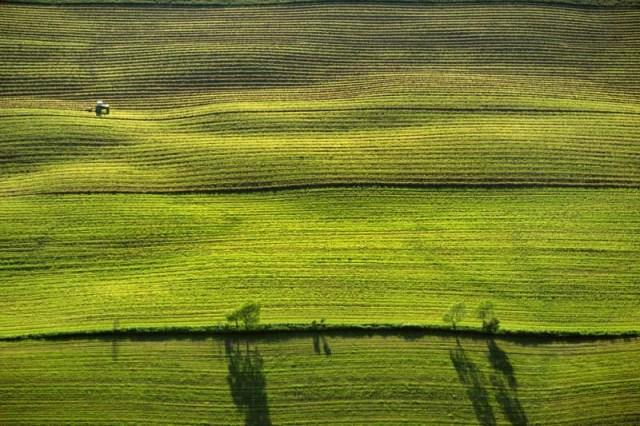 17. Plantação de grãos em Vermont (EUA)