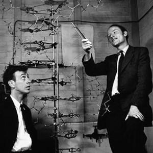 Watson (solda) ve Crick Cavendish laboratuarında, 1953. Aralarında DNA maketi.