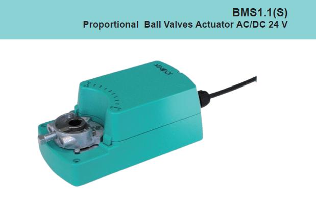 BMS1.1
