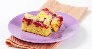 Piece of raspberry crumb cake