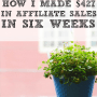 Passive Income Report: How I Made $427 In My Sleep in Six Weeks