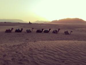 Circuito FEz a Marrakech por el Desierto 1