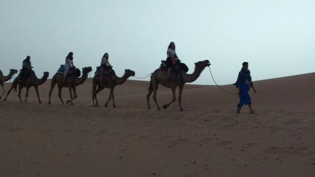 fin-de-ano-en-el-desierto-1