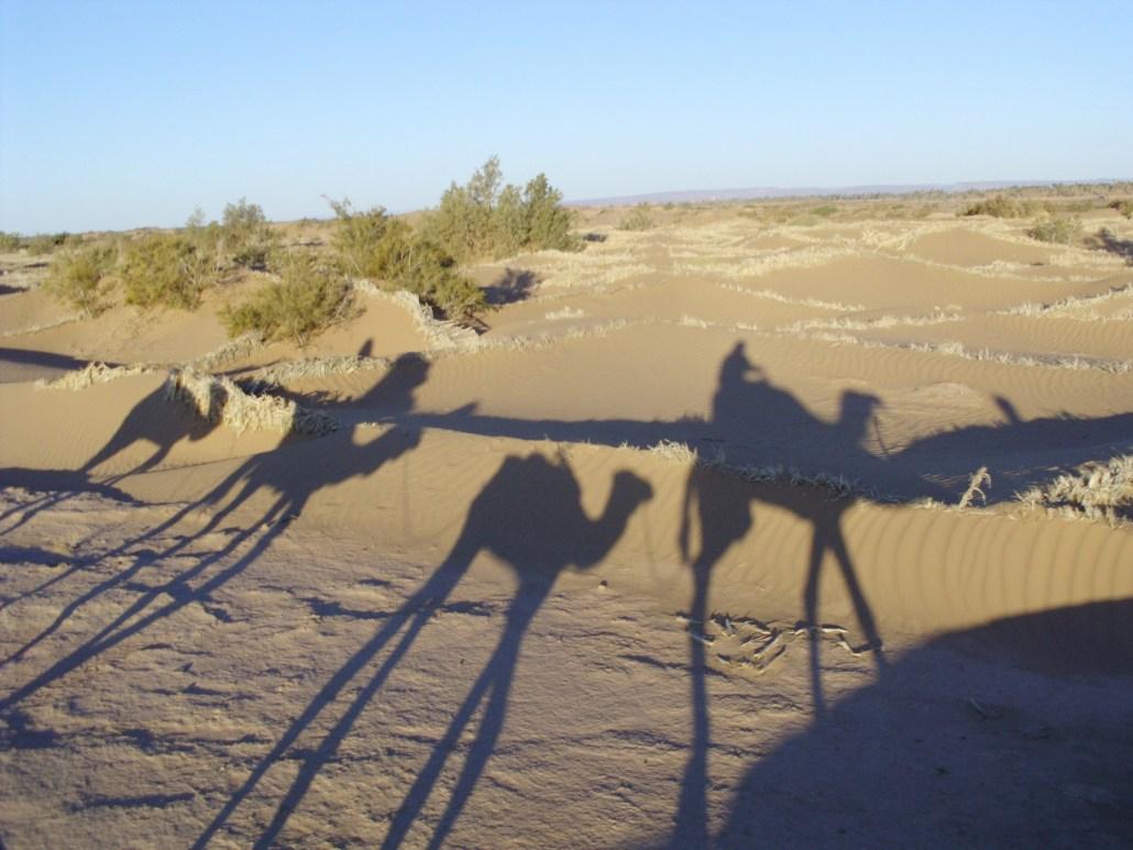 guia-para-viajar-al-desierto-de-marruecos-viajes-amazigh-014
