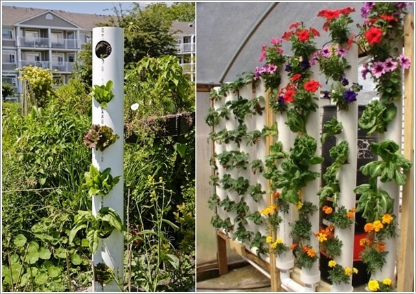 Materials to Use for a Vertical Garden 7