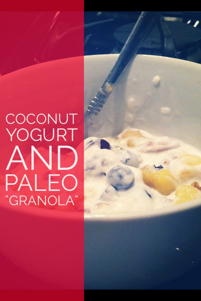 Coconut Yogurt and Paleo Nuts Granola