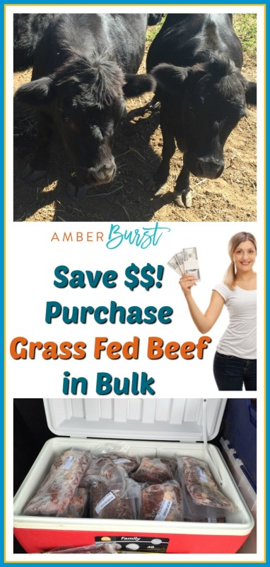 Buy Grass Fed Beef in Bulk and Save Money