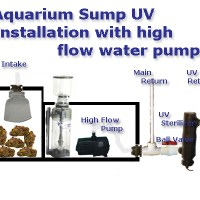 saltwater fish tank filter setup - Basic Saltwater Aquarium Set Up; Marine Tank Diagrams, Equipment