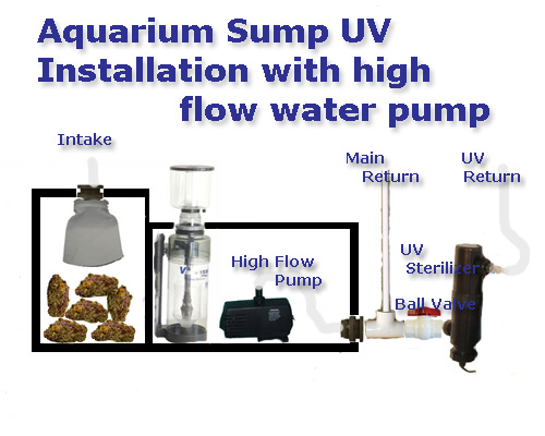 Basic Saltwater Aquarium Set Up; Marine Tank Diagrams, Equipment