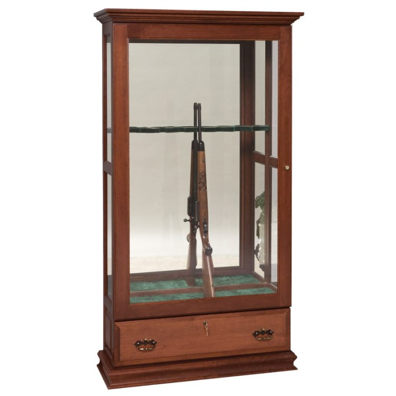 Large Of Gun Display Case