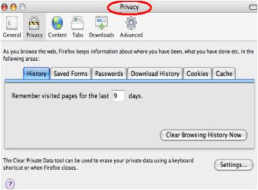 Browser Privacy Settings