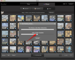 Bulk Download Flickr Photos