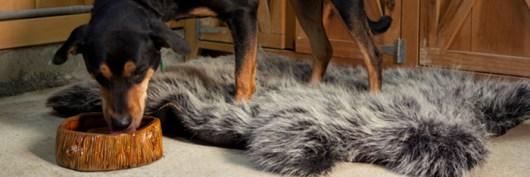 faux bois ceramic dog bowl - life of ryley