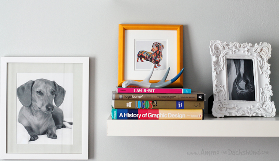 A Dachshund's Art Gallery // Ammo the Dachshund