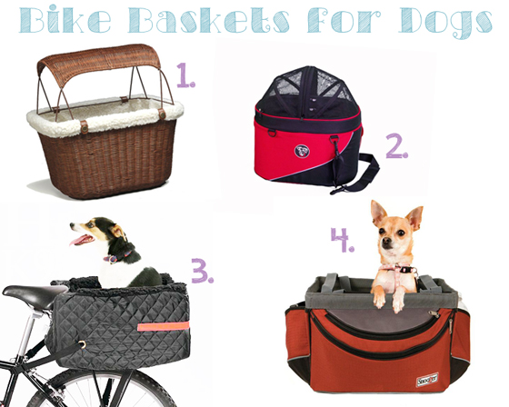 Bike Baskets for Dogs // Ammo the Dachshund