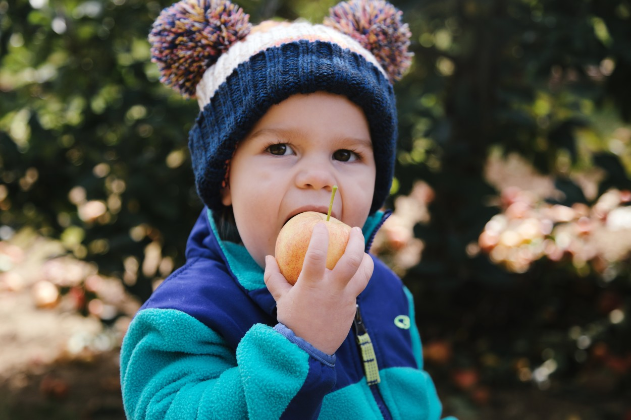 Emmy chomping her apple. Photo c/o Molly Grunewald Photography