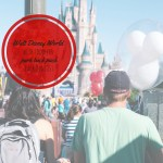 Walt Disney World with Toddlers: Park Backpack Packing List.